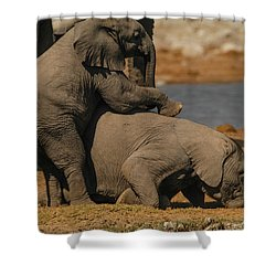 Us Together Shower Curtain