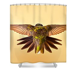 Shower Curtain featuring the photograph Usaf Hummingbirds Wings by Randall Branham
