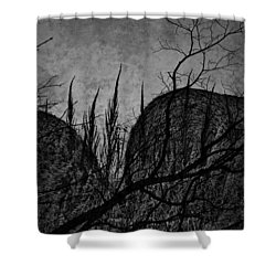 Valley Of Sticks Shower Curtain by Empty Wall