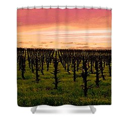 Valley Springs Shower Curtain
