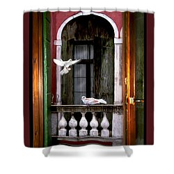 Venice Window Shower Curtain