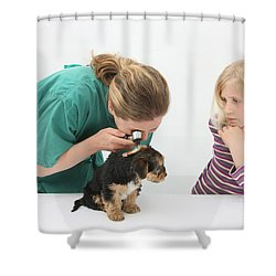 Vet Using An Otoscope To Examine A Pups Shower Curtain by Mark Taylor