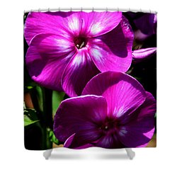 Vibrant Shower Curtain by Karen Harrison