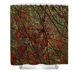 Vines And Twines  Shower Curtain by Jerry Cordeiro
