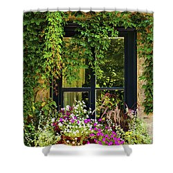 Vines Growing On A Wall And Flowers Shower Curtain by David Chapman