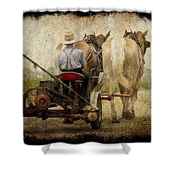 Vintage Amish Life D0064 Shower Curtain by Wes and Dotty Weber