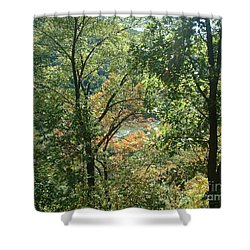 Virginia Walk In The Woods Shower Curtain by Mark Robbins