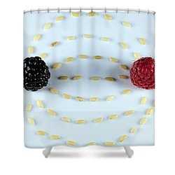 Vitalberry And Raspberry Depicting Magnetic Field Line Shower Curtain by Paul Ge