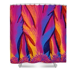 Vitamin E Crystals Shower Curtain by Michael W Davidson