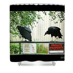Shower Curtain featuring the photograph Vultures Guarding Property by Renee Trenholm
