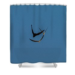 VY Shower Curtain