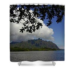 Waiahole Beach Park Shower Curtain by Mark Gilman