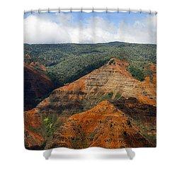 Waimea Canyons Shower Curtain by Debbie Karnes