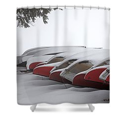 Waiting For Spring Shower Curtain by John Stephens