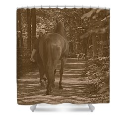 Shower Curtain featuring the photograph Walk Down Memory Lane by Davandra Cribbie