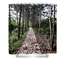 Stone Path Shower Curtain by Skip Nall