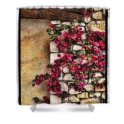 Wall Beauty Shower Curtain by Mauro Celotti