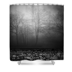 Wall Of Sisters  Shower Curtain by Empty Wall