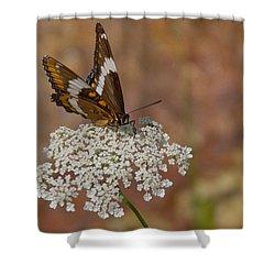 Warm Summer Day Shower Curtain