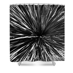 Warp Speed  Shower Curtain