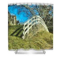 Warwick's Curve Shower Curtain by Trish Tritz