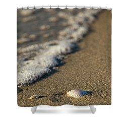 Washing Away Shower Curtain