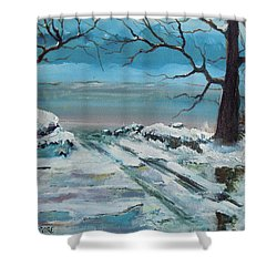 Washoe Winter Shower Curtain