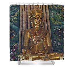 Wat Kaewjamfa Ubosot Principal Buddha Dthb1072 Shower Curtain