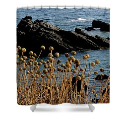 Shower Curtain featuring the photograph Watching The Sea 1 by Pedro Cardona