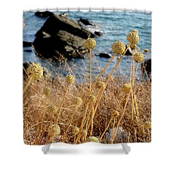 Shower Curtain featuring the photograph Watching The Sea 2 by Pedro Cardona
