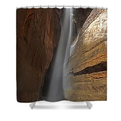 Water Canyon Shower Curtain by Susan Rovira