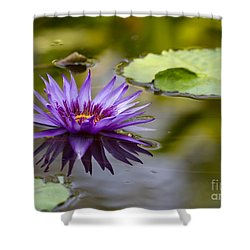 Water Lily Kissing The Water Shower Curtain by Sabrina L Ryan