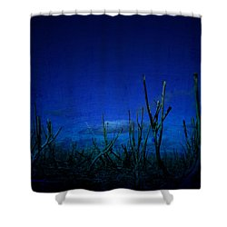 Water World Shower Curtain by Empty Wall