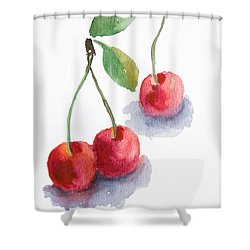Watercolor Cherry  Shower Curtain