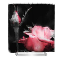 Shower Curtain featuring the painting Watercolor Rose by Michelle Joseph-Long
