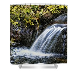 Shower Curtain featuring the photograph Waterfall by Hugh Smith