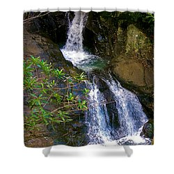 Waterfall In The Currumbin Valley Shower Curtain
