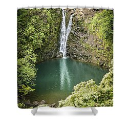 Waterfall Reflections Shower Curtain by Debbie Karnes