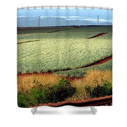 Waves Of Pineapple Shower Curtain by Karen Wiles