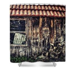Wayside Shower Curtain by Jutta Maria Pusl