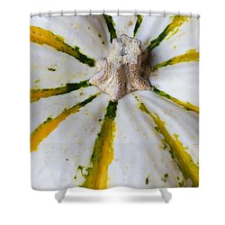 We Can Be Unique Shower Curtain by Heidi Smith
