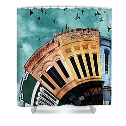 Wee Bryan Close-up Shower Curtain by Nikki Marie Smith