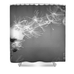 Shower Curtain featuring the photograph Weed In The Wind by Deniece Platt