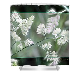 Shower Curtain featuring the photograph Weeds by EricaMaxine  Price
