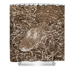 Welcome To The Swamp - Sepia Shower Curtain by Carol Groenen