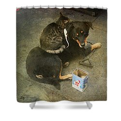 We're In This Together Shower Curtain by Laurie Search