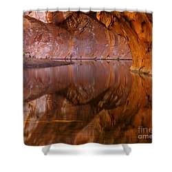 West Fork Illusion Shower Curtain by Mike  Dawson