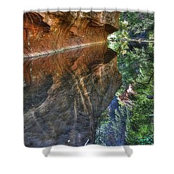 Shower Curtain featuring the photograph West Fork Reflection by Tam Ryan