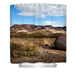 West Texas Shower Curtain