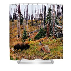 Western Icon Shower Curtain by Benjamin Yeager